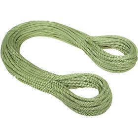Mammut 9.5 Infinity Classic Rope 40m yellow-white